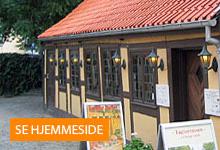 Den Grimme Ælling Hans Jensens Stræde 1, 5000 Odense C