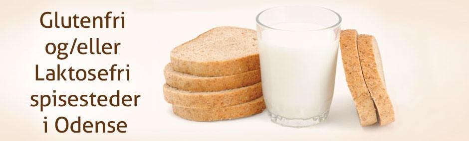 Glutenfri / Laktosefri mad